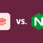 Redis Full-Page Cache vs NGINX FastCGI Cache for WordPress