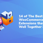 14 of The Best WooCommerce Extensions that Work Well Together in 2020