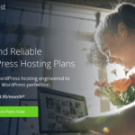 Bluehost Review: Is it the Best Option in WordPress Hosting?