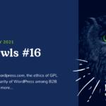 WP Owls #16 – WP Owls