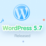 WordPress 5.7 Release Update: Things You Should Give A Check