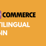 How to Choose the Best WooCommerce Multilingual Plugin and Set It Up