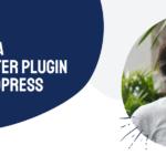Building a Newsletter Plugin for WordPress