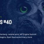 WP Owls #40