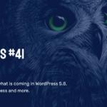 WP Owls #41