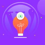 New WordPress Plugin Ideas For Developers